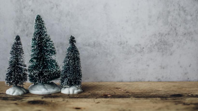 Die großen Fragen der Liebe: Wie einigt sich die Patchworkfamilie an Weihnachten?