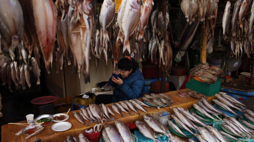 Koreanisches Essen: Nicht nur der Fisch auf dem Markt in Busan ist frisch, auch das Make-Up der Verkäuferinnen.