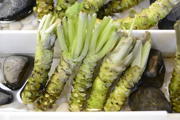 Wasabi: Kilopreis: 200 Euro. Echter Wasabi gehört zu den teuersten Lebensmitteln überhaupt.
