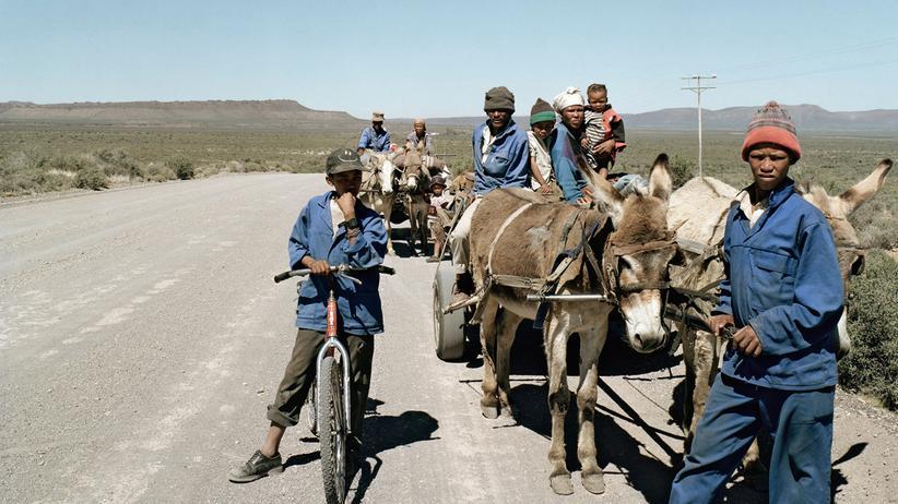Südafrika: Das Trennende, das sie verbindet