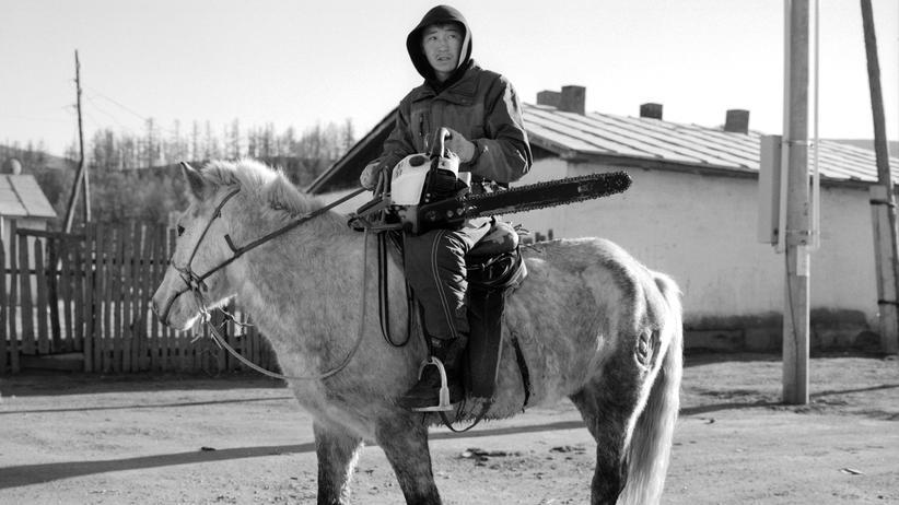 Mongolei: Wundersam fremd
