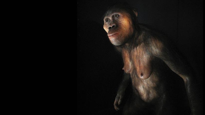 Archäologie: Seit wann ist der Mensch ein Mensch?