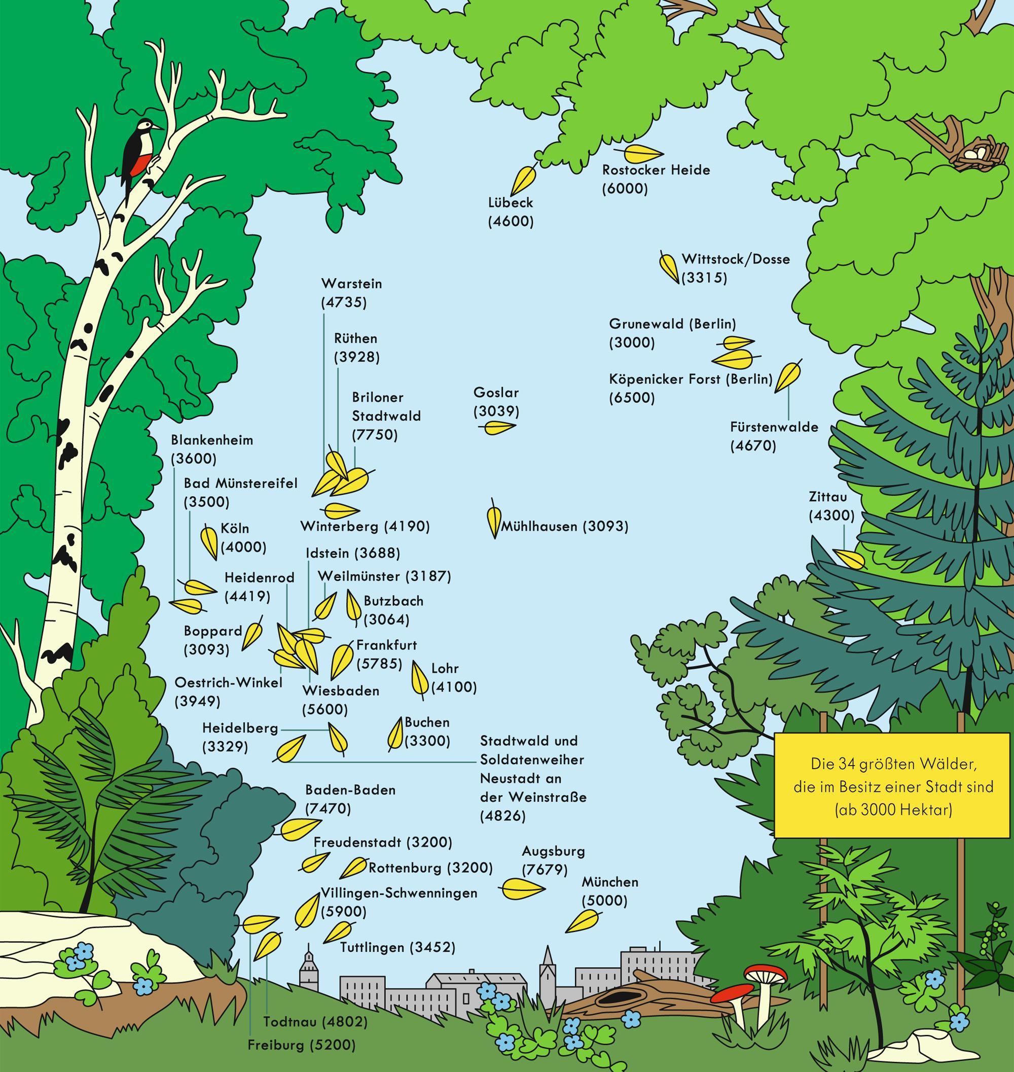 Deutschland: Stadtwälder