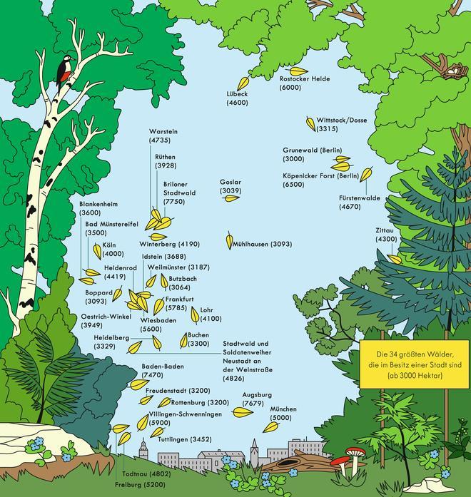 wälder in deutschland karte Deutschland: Stadtwälder   ZEITmagazin wälder in deutschland karte
