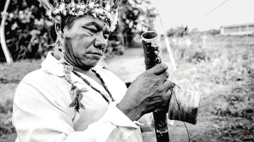 Hipana im Amazonaswald: Am Übergang von Himmel und Hölle