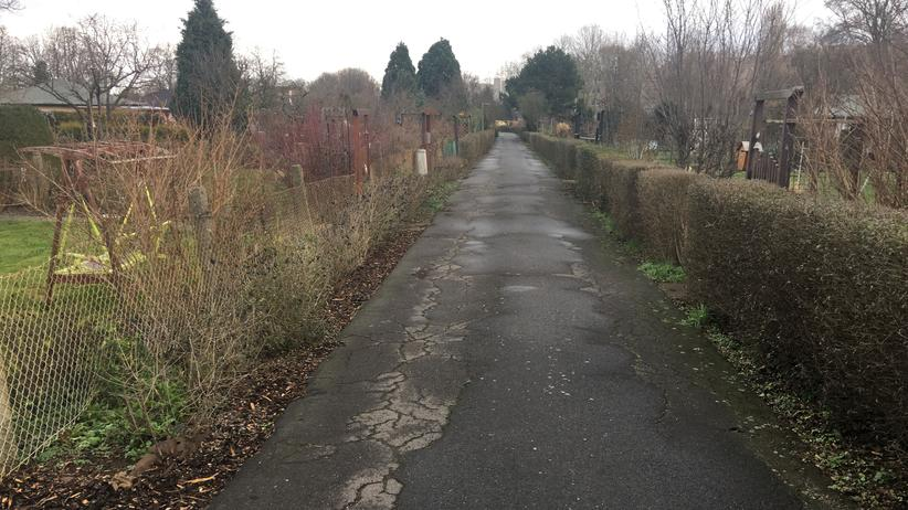 Kleingärten: Hier gibt es nix zu sehen – dabei könnten Kleingartenanlagen großartige Parks sein.