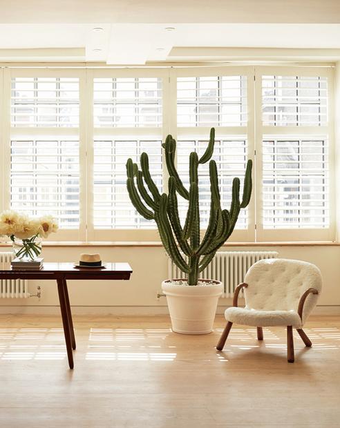 3/12 Wie Ihre Geschäfte In London Und Berlin Ist Auch Alex Eagles Londoner  Wohnung In Schwarz, Weiß Und Holz Gehalten. Und Mit Großen Pflanzen  Ausgestattet.