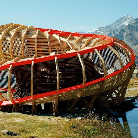 Holz-Architektur: Was aus dem Wald wird